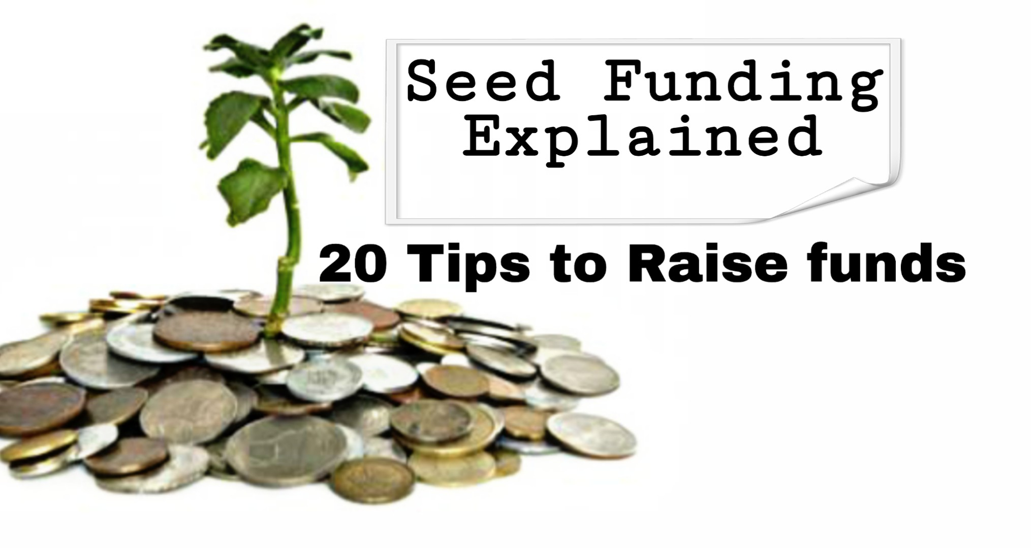 Seed funding for startup